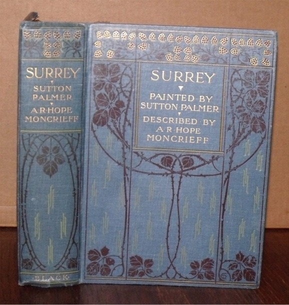 Image for Surrey.