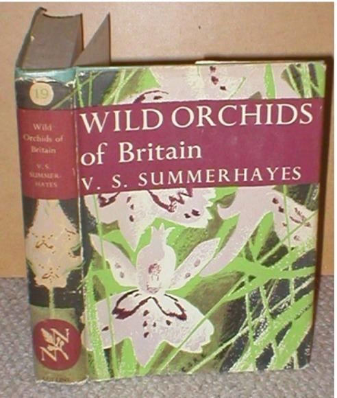 Image for Wild Orchids Of Britain, with a key to the species