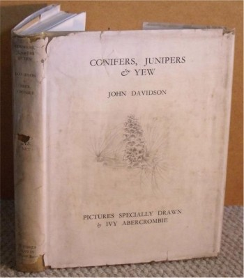 Image for Conifers, Junipers & Yew: Gymnosperms of British Columbia. Pictures Specially Drawn by Mrs. Ivy Abercrombie.