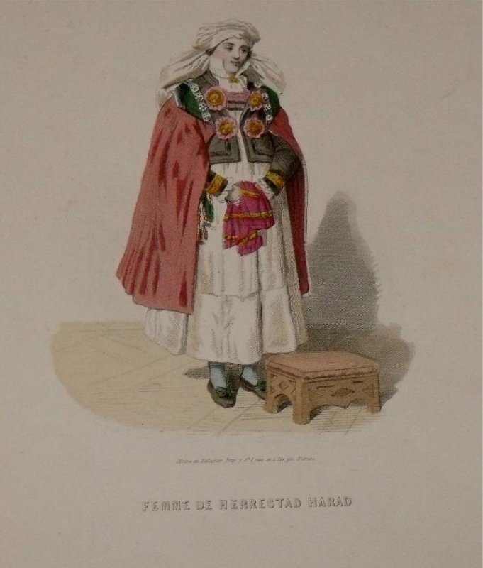 Image for Attractive original engraving of Femme de  Herrestad Harad. Woman from Herrestad Harad.
