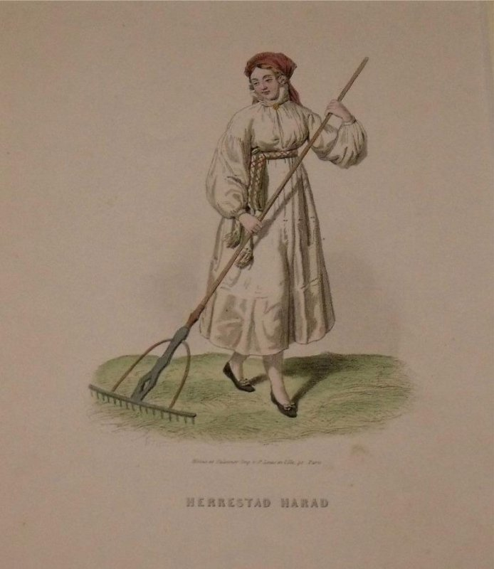 Image for Attractive original engraving of Herrestad Harad. Woman from Herrestad Harad.