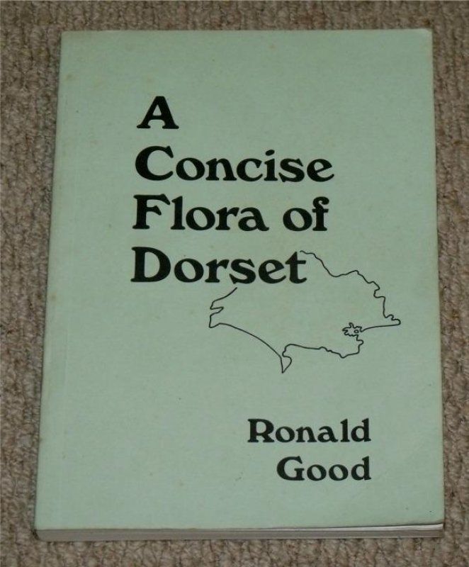Image for A Concise Flora of Dorset.