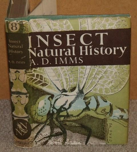 Image for Insect Natural History. (The New Naturalist 8).