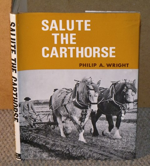 Image for Salute the Carthorse.