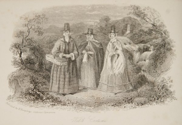 Image for Picturesque Scenery in North Wales. Engraved and Printed by H. Humphreys, Carnarvon.