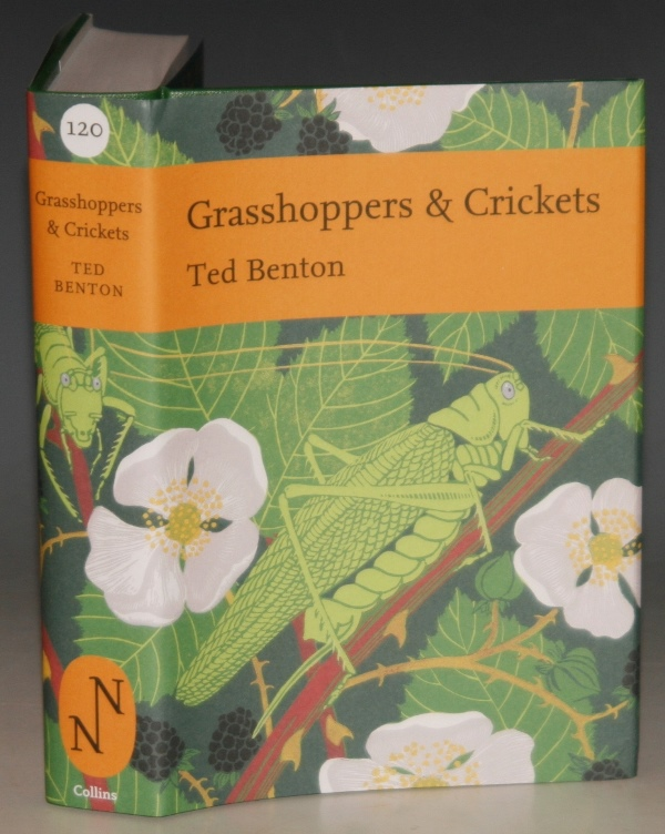 Image for Grasshoppers & Crickets. (The New Naturalist 120.)