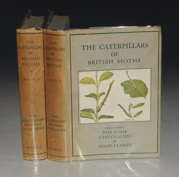 "Image for The Caterpillars of the British Moths. Including The Eggs, Chrysalids and Food-Plants. Based upon ""The Moths of the British Isles"", by R. SOUTH. First and Second Series. In Two volumes."
