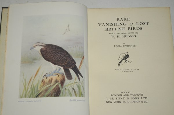 Image for Rare, Vanishing & Lost British Birds. Compiled from notes by W. H. Hudson by Linda Gardiner. With 25 Coloured plates by H. Grovold.