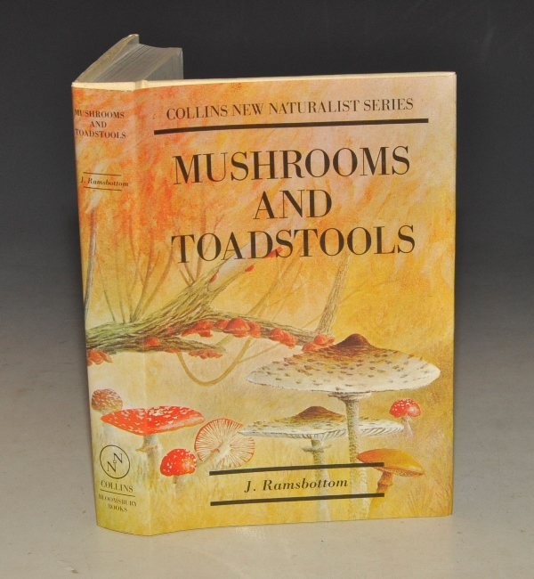 Image for Mushrooms & Toadstools. A Study of the Activities of Fungi. (The New Naturalist 7).