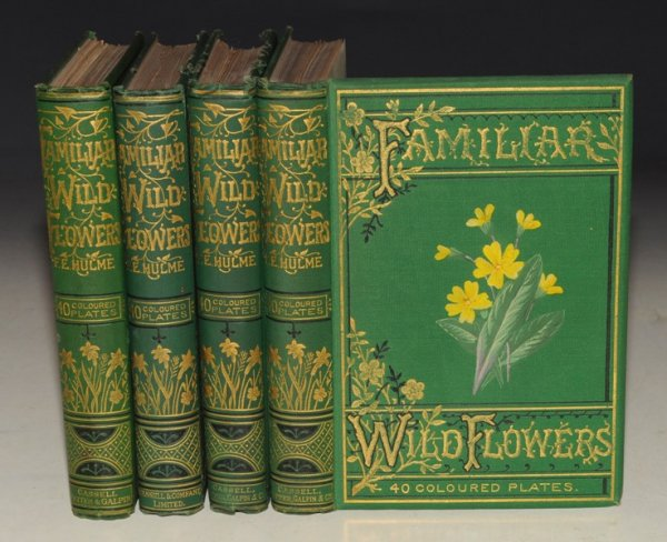 Image for Familiar Wild Flowers. Figured and Described by F.Edward Hulme. Four volumes with coloured plates. First to Fourth Series.