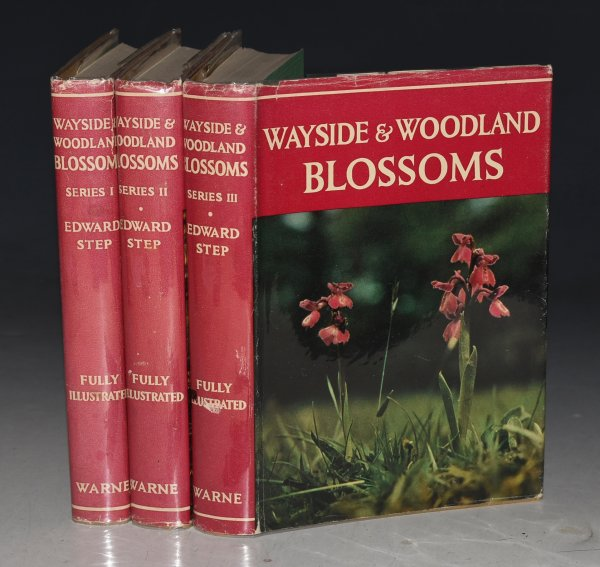 Image for Wayside and Woodland Blossoms. A Guide to British Wild-Flowers, with clear descriptions of 394 species. First, Second, and Third Series. Complete 3 Volumes. New Editions.