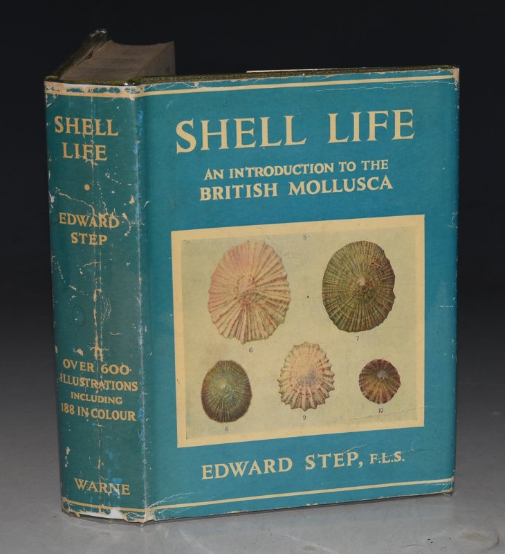 Image for Shell Life. An Introduction to the British Mollusca. Revised by A. Laurence Wells. With upwards of six hundred illustrations 188 of which prepared in colour by W. J. Stokoe.