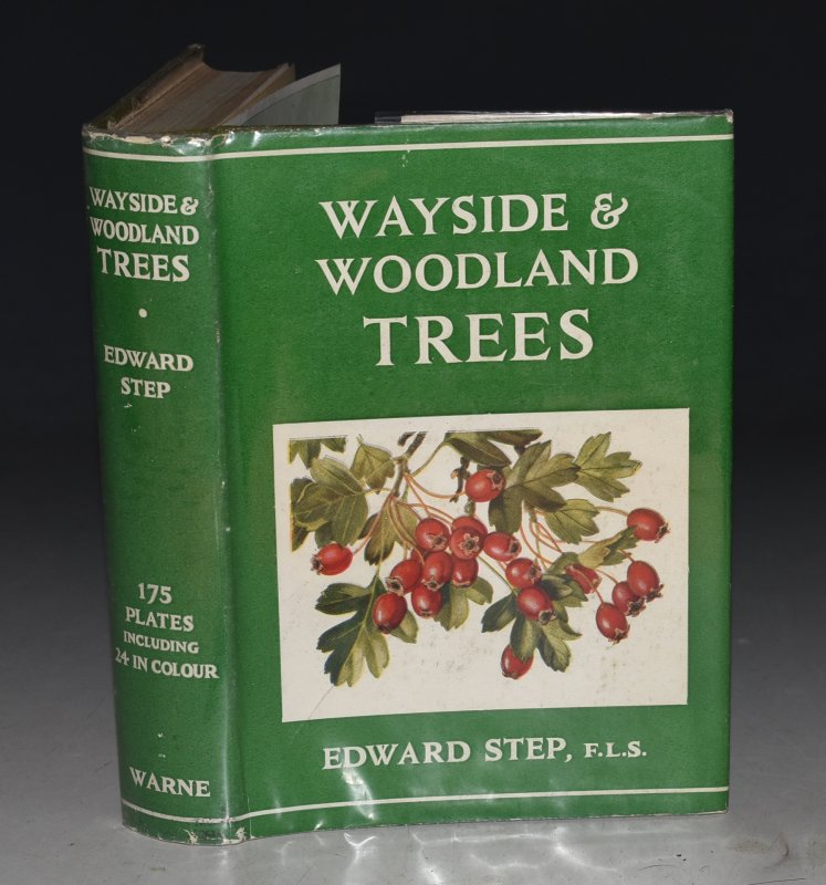 Image for Wayside and Woodland Trees. A Pocket Guide to the British Sylva. The Wayside & Woodland Series. Also Pictorial Keys of Leaves and Buds to Facilitate Identification.
