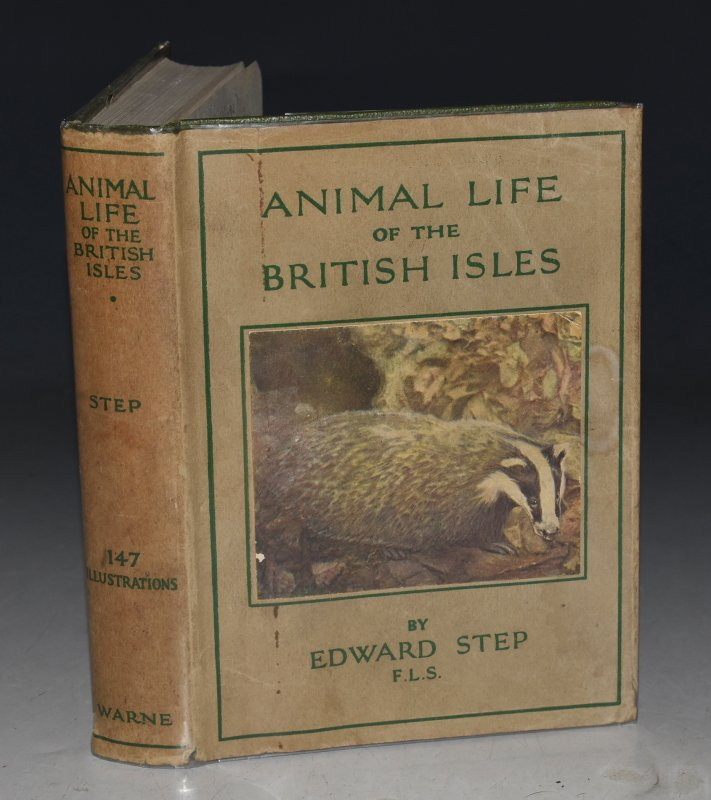 Image for Animal Life of the British Isles. A Guide to the mammals, reptiles and batrachians. Wayside and Woodland Series.
