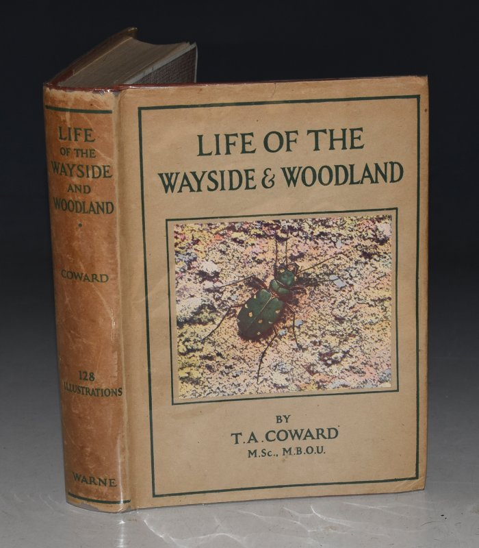 Image for Life of the Wayside & Woodland. When, Where, and What to Observe and Collect. A Handy Guide with descriptive Text.