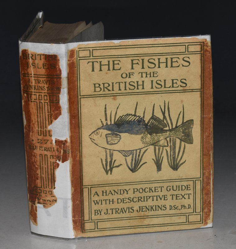 Image for The Fishes of the British Isles. Both Fresh Water and Salt. With 299 Illustrations 128 of which are in full colour.