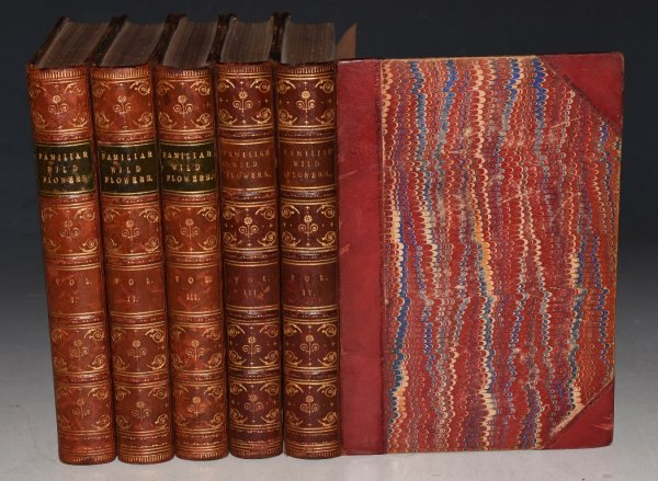 Image for Familiar Wild Flowers. Figured and Described by F.Edward Hulme. Five volumes with coloured plates. First to Fifth Series. In Fine Binding.