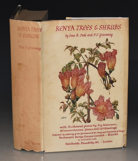 Image for Kenya Trees & Shrubs Published by the authority of the government of the colony and protectorate of Kenya.