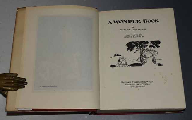 Image for A Wonder Book Illustrated by Arthur Rackham.