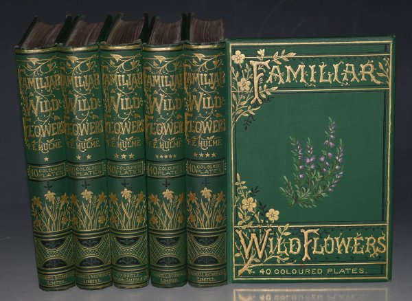 Image for Familiar Wild Flowers. Figured and Described by F. Edward Hulme. With Coloured plates. Five Volumes Complete. (First to Fifth Series.)