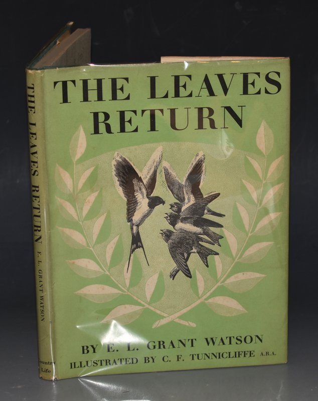 Image for The Leaves Return Illustrated by C.F. Tunnicliffe.