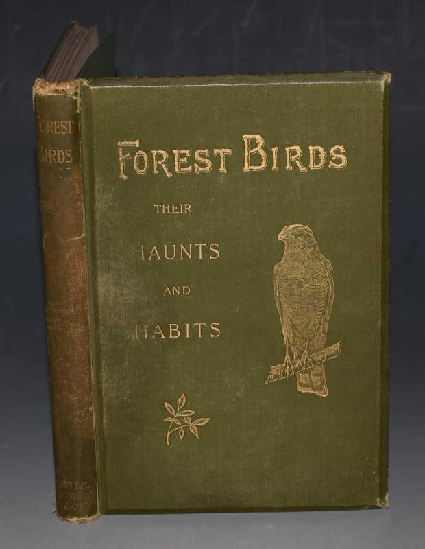 Image for Forest Birds, Their Haunts and Habits Short Studies From Nature.