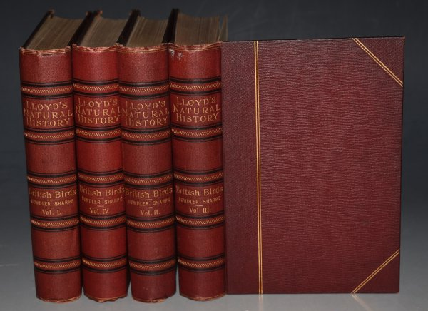 Image for A Hand-book to the Birds of Great Britain. Allen's Naturalist's Library. Four volumes.