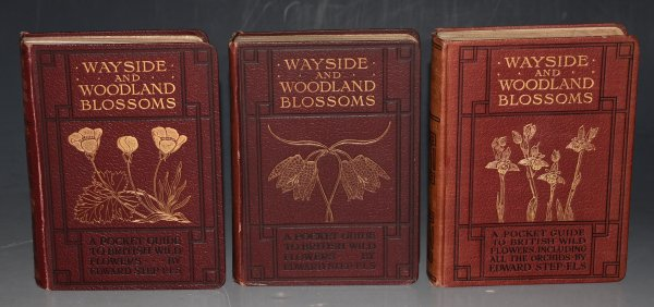 Image for Wayside and Woodland Blossoms. First, second and third series ( most of volume 3 deals with Orchids). A Pocket Guide to British Wild-flowers for the Country Rambler.