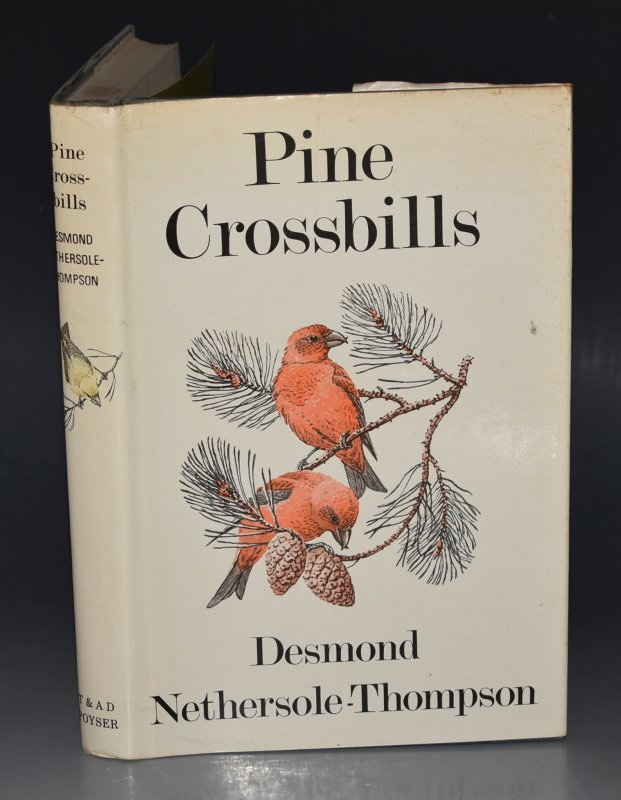 Image for Pine Crossbills. Illustrations by Donald Watson.