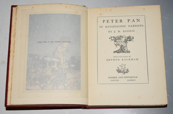 Image for Peter Pan in Kensington Gardens. With 16 Coloured Plates by Arthur Rackham.