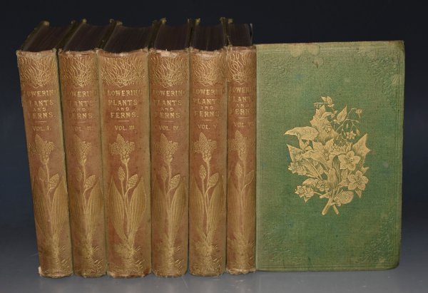 Image for The Flowering Plants and Ferns of Great Britain. Six volumes.