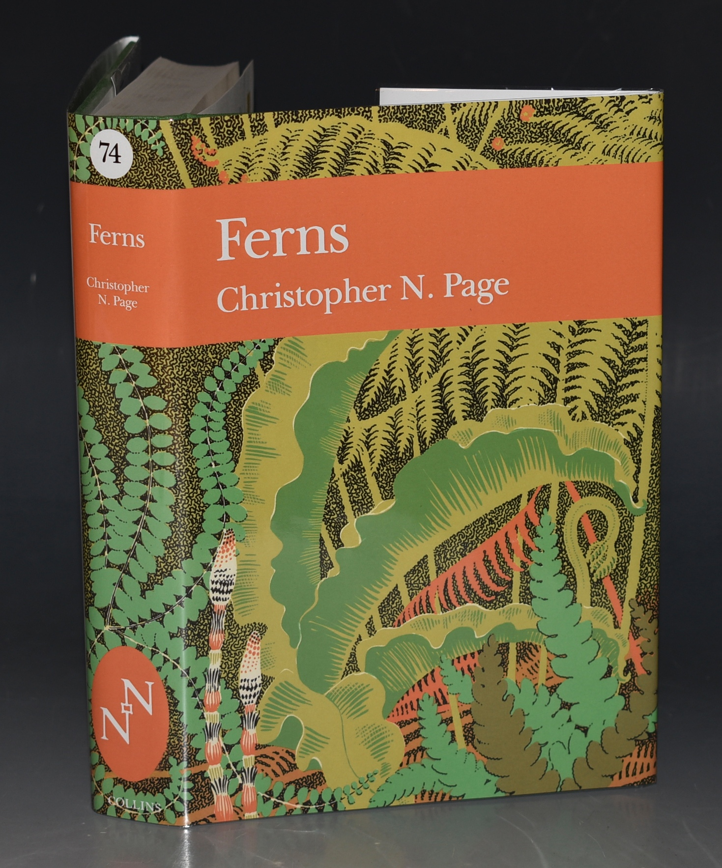 Image for Ferns. (The New Naturalist 74).