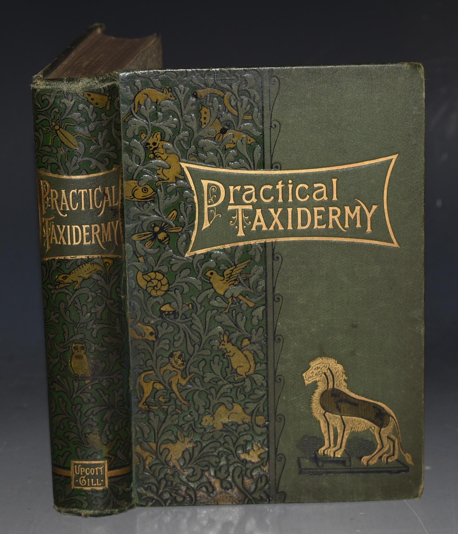 Image for Practical Taxidermy: A Manual of Instruction to the Amateur in Collecting, Preserving, and Setting Up Natural History Specimens of all kinds. To which is added a chapter upon the Pictorial Arrangement of Museums. Illustrated. Second edition, revised and considerably enlarged. With additional instructions in modelling and artistic Taxidermy.
