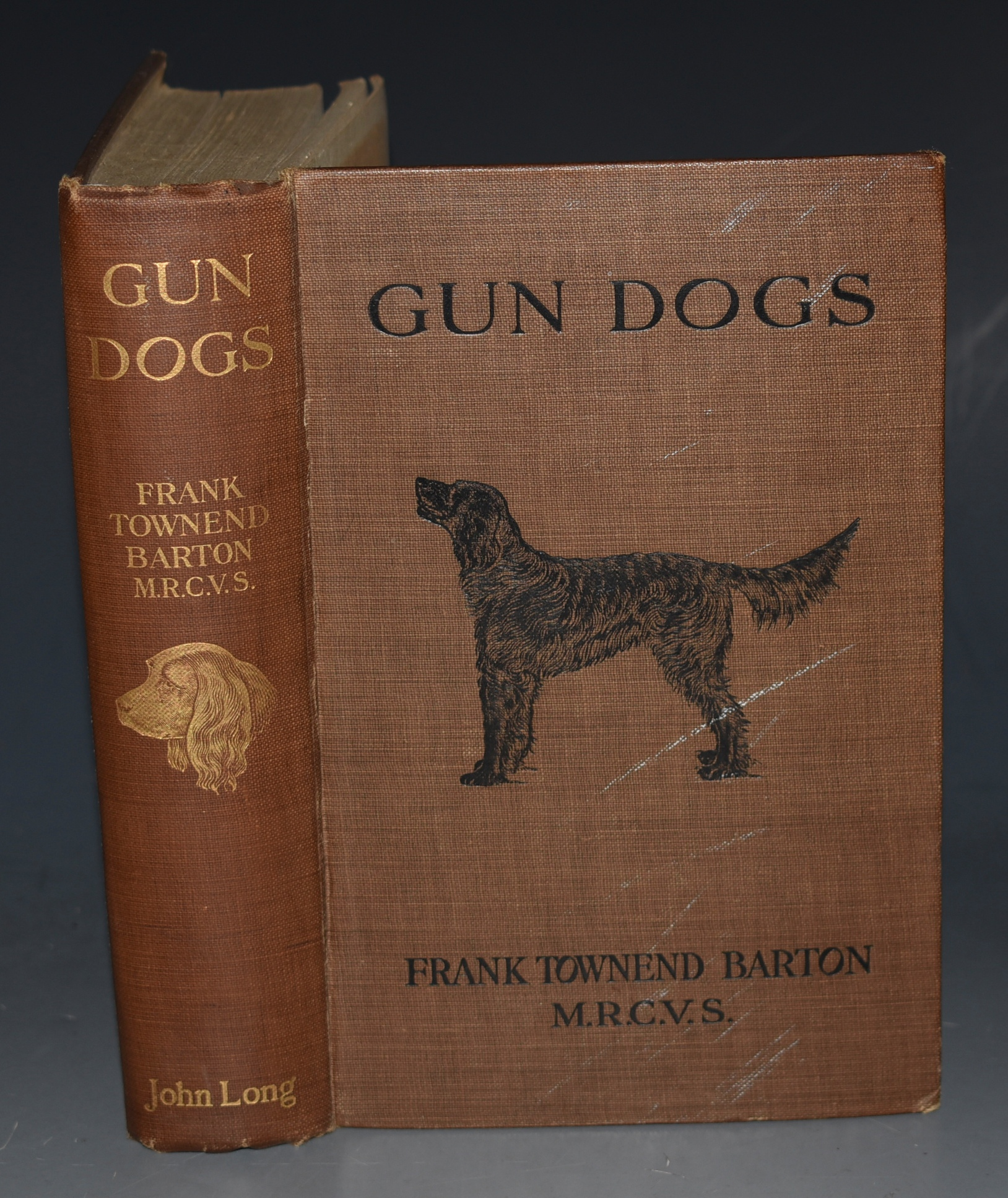 Image for Gun Dogs. With Forty-Six Illustrations.