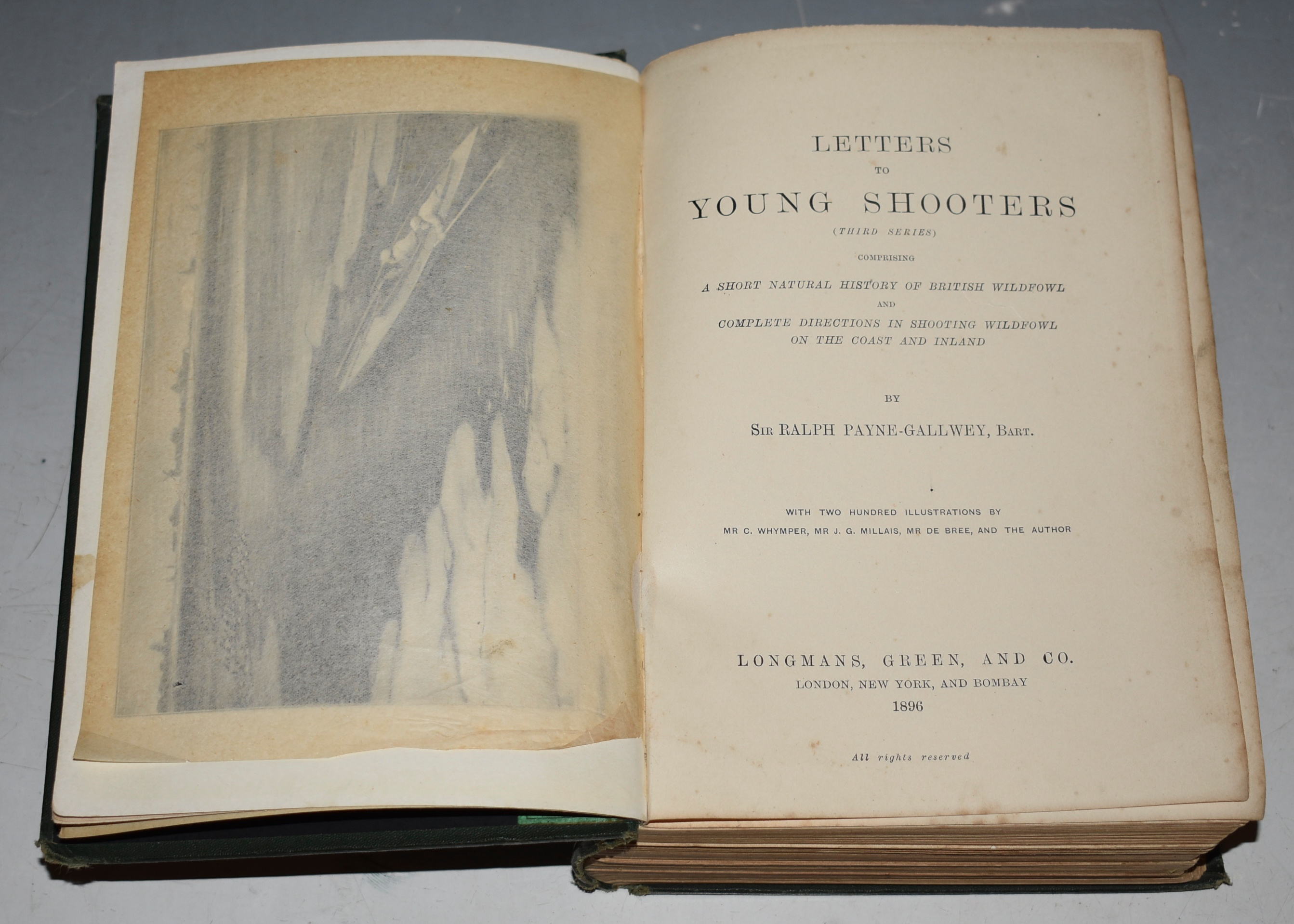 Image for Letters to young Shooters (Third Series) Comprising a short natural history of British Wildfowl and complete directions in shooting wildfowl on the coast and inland. With two hundred illustrations by Mr C. Whymper, Millais, Bree and the Author.