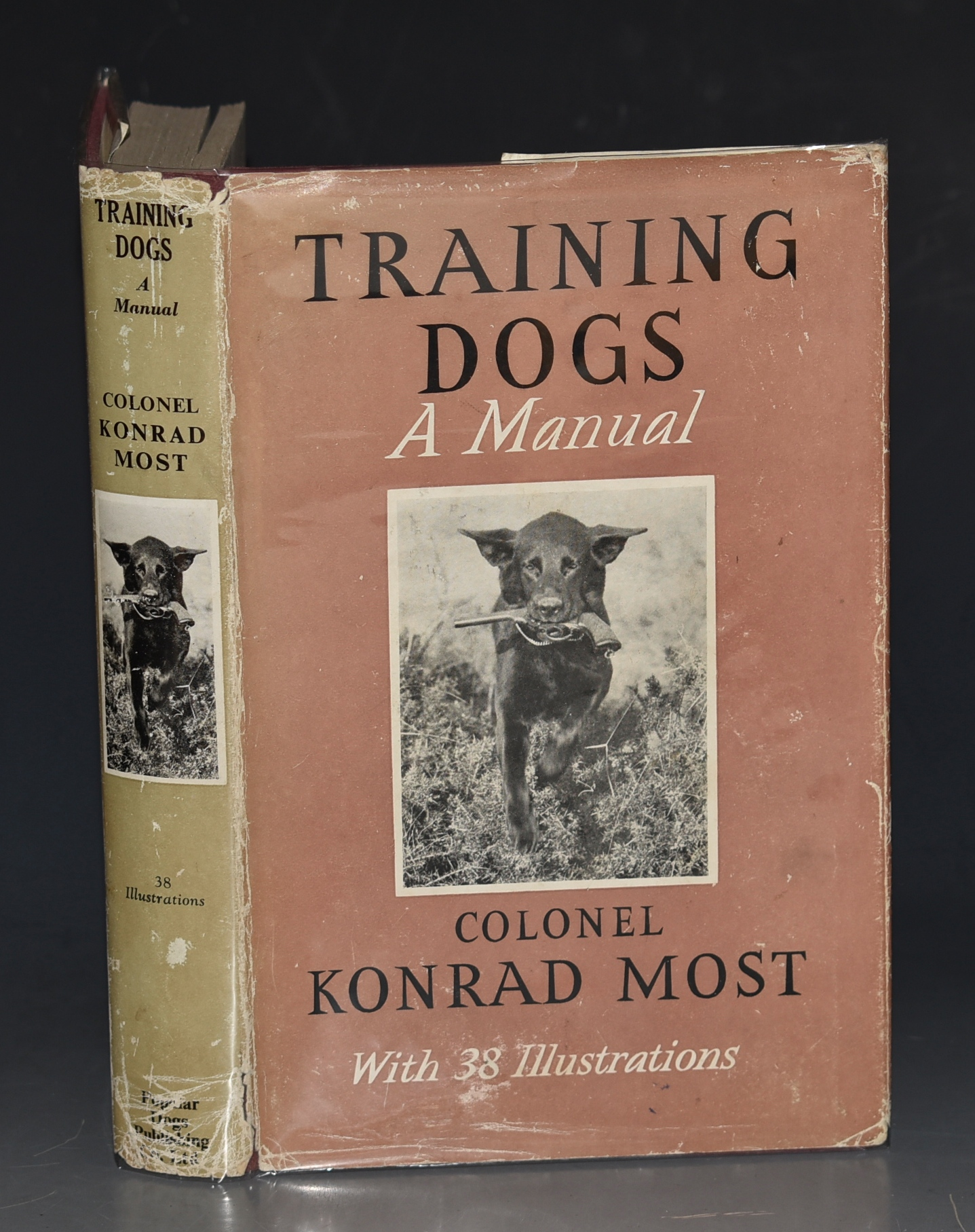 Image for Training Dogs A Manual. Translated from German by James Cleugh. With 38 Illustrations.