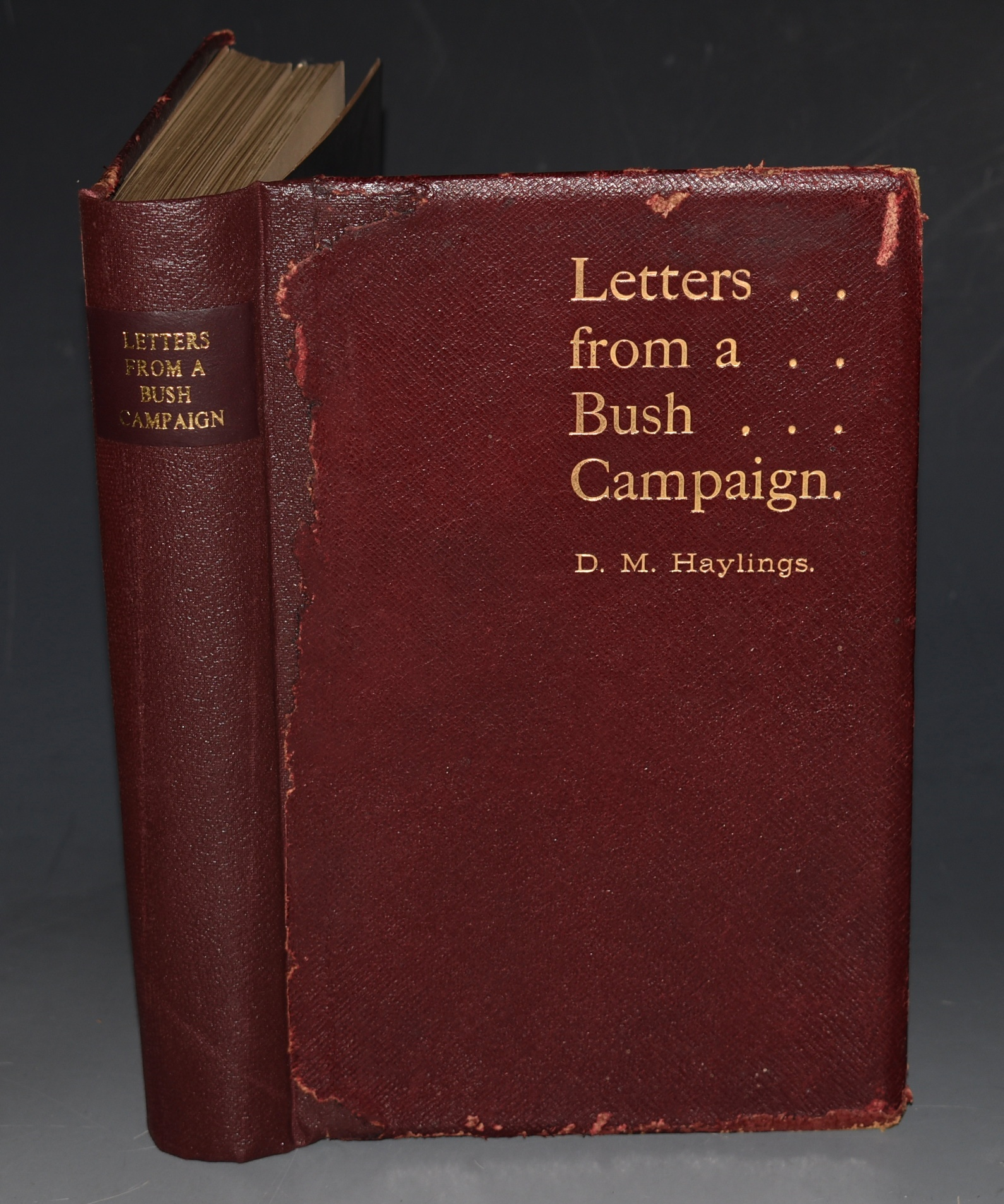 Image for Letters From A Bush Campaign