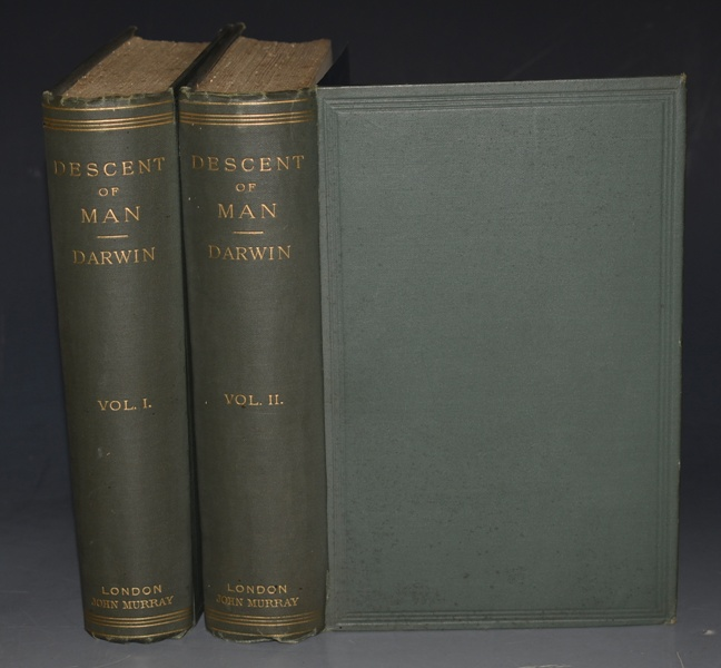 Image for The Descent of Man. And Selection in Relation to Sex. Second Edition, Revised and augmented. 22nd Thousand. With Illustrations. In Two Volumes.