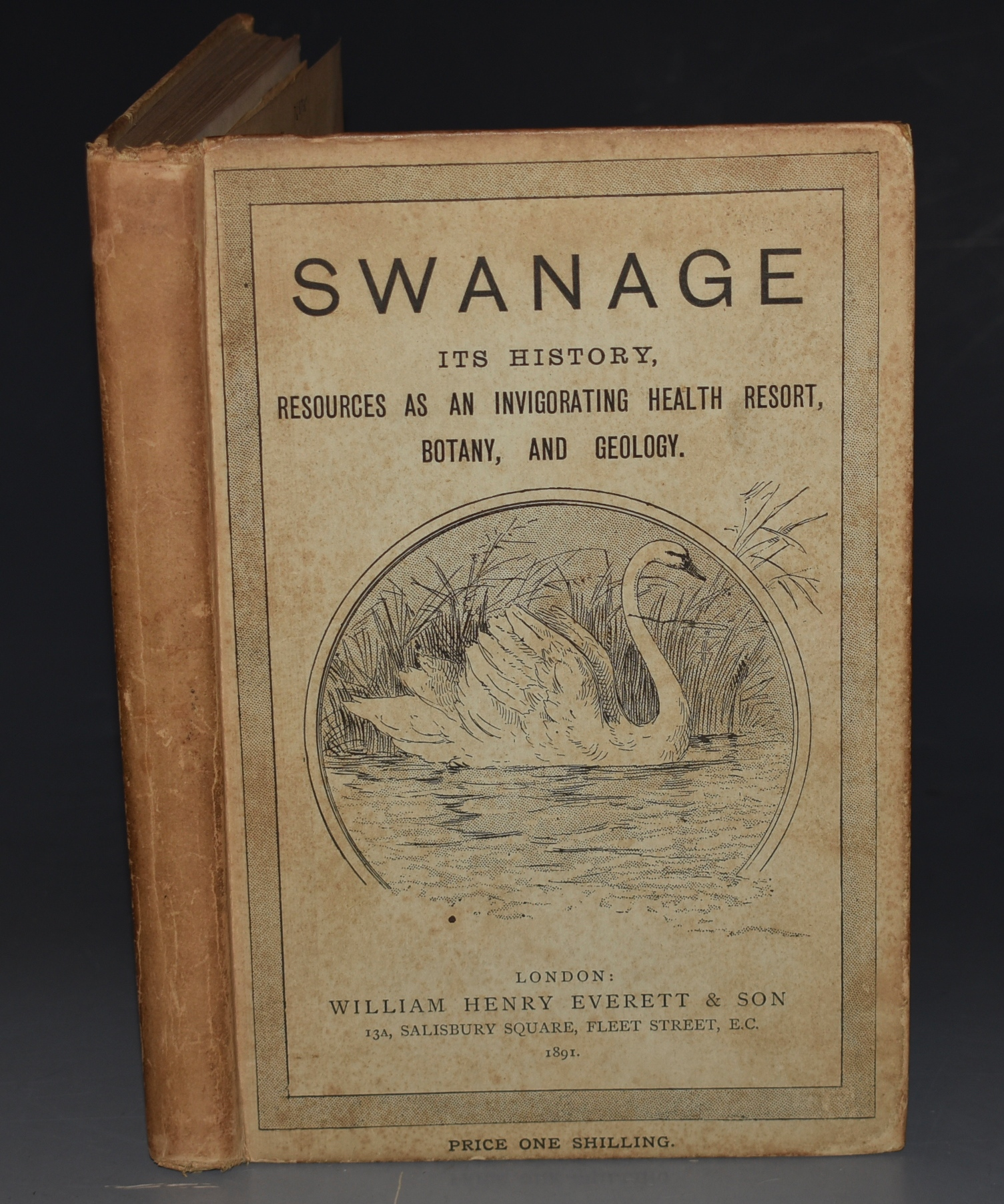 Image for Swanage. (Isle of Purbeck). Its History, Resources as an Invigorating Health Resort, Botany, and Geology.