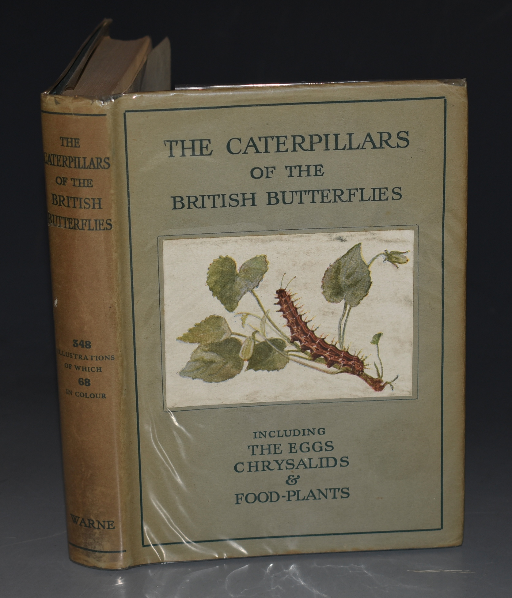 "Image for The Caterpillars of the British Butterflies. Including The Eggs, Chrysalids and Food-Plants. (The Wayside and Woodland Series). Based upon ""The Butterflies of the British Isles"" by Richard South."