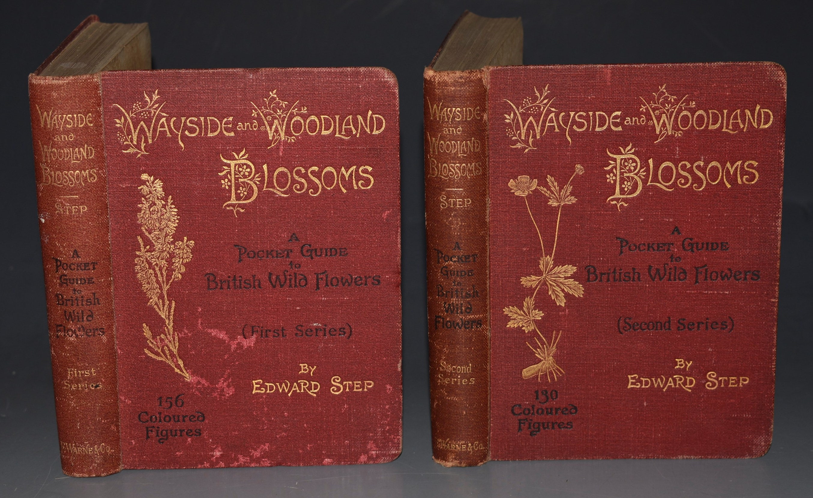 Image for Wayside and Woodland Blossoms. (First Series & Second Series) The Wayside and Woodland Series. A Pocket Guide to British Wild-flowers for the Country Rambler. In Two Volumes.