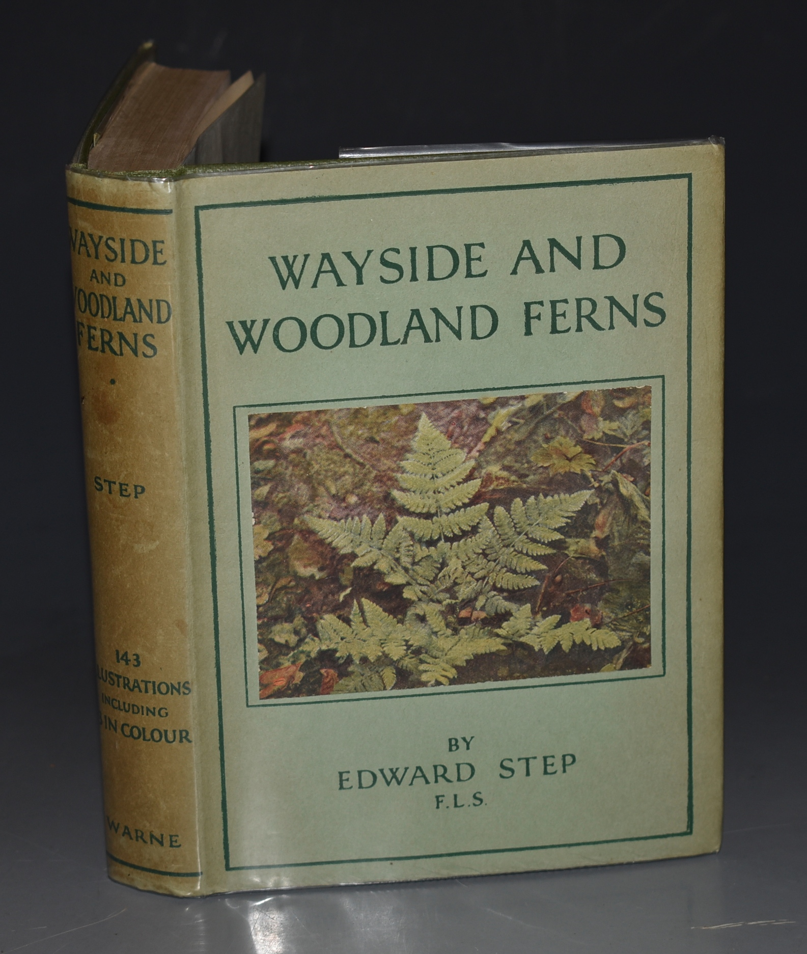 Image for Wayside and Woodland Ferns. A Guide to British Ferns Horsetails and Club-Mosses. With coloured figures of every species by Mabel E.Step and sixty-seven photographs by the author.