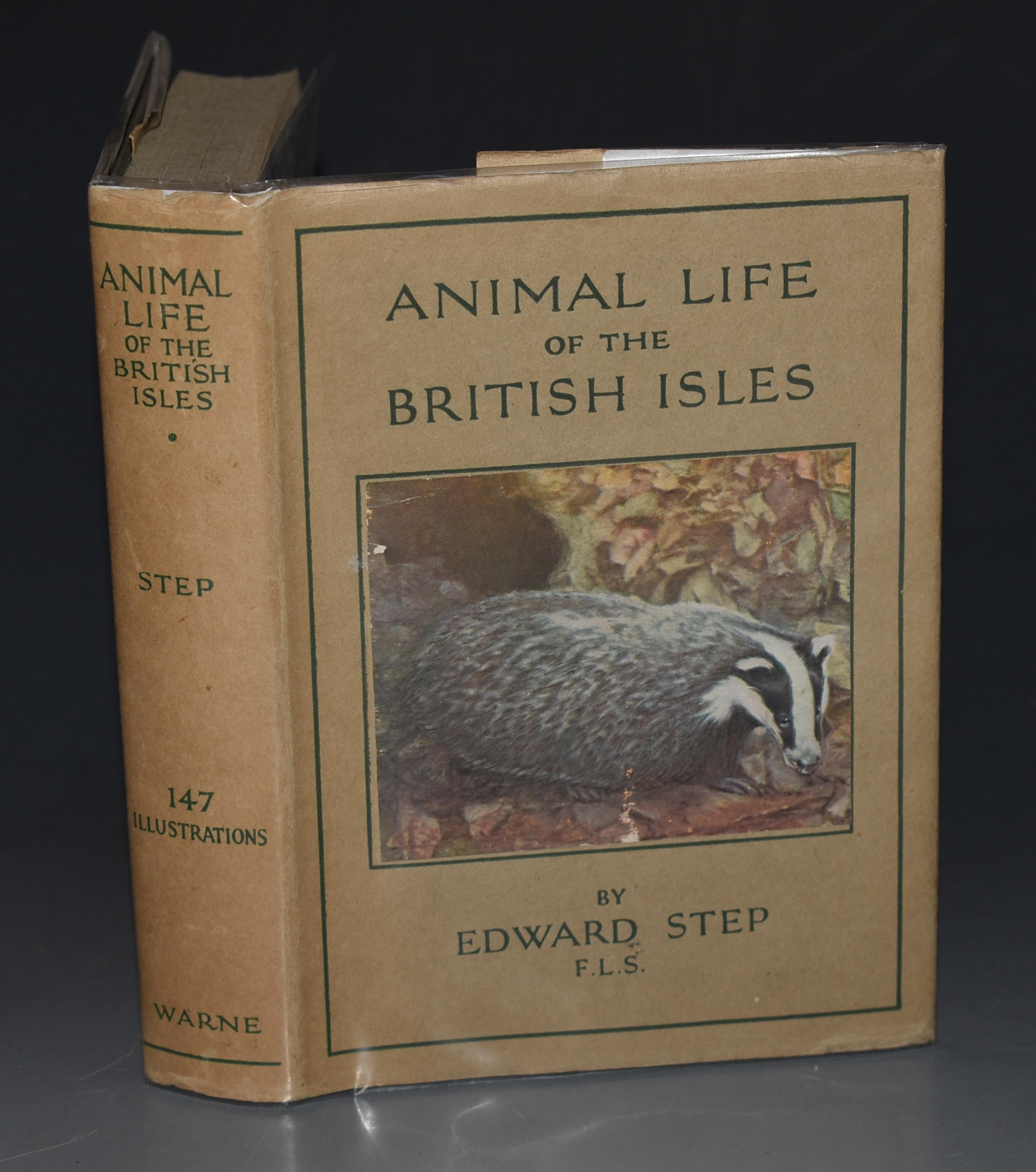 Image for Animal Life of the British Isles. Wayside and Woodland Series.