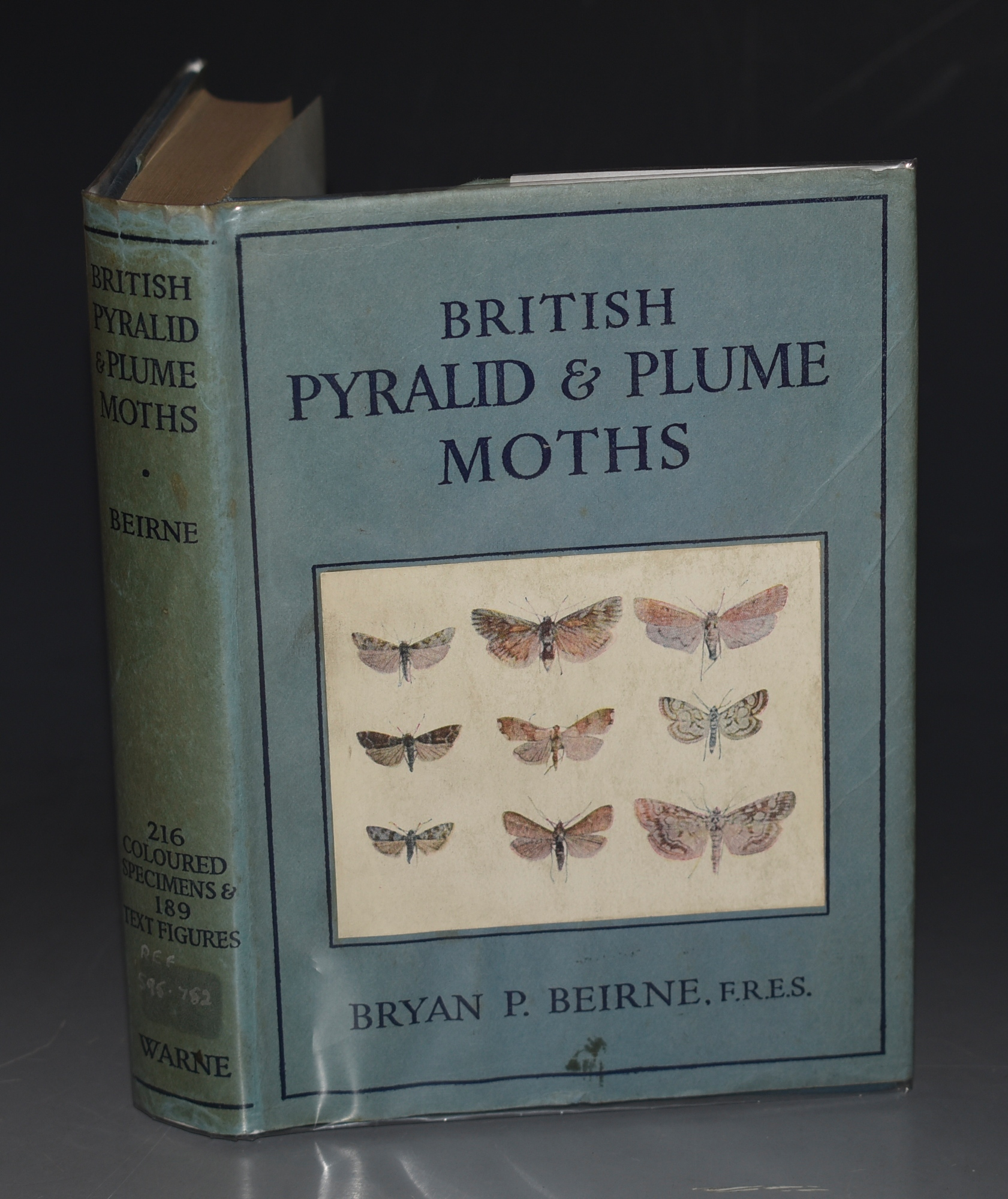 Image for British Pyralid and Plume Moths. Containing a descriptive history of all the British species of moths of the families Pyralidae, Pterophoridae, and Orneodidae. With 405 Figures.