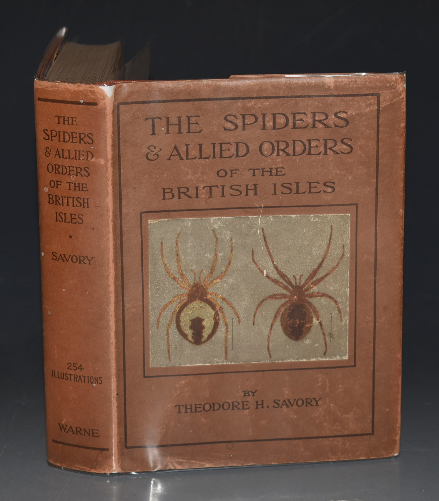 Image for The Spiders and Allied Orders of the British Isles. The Wayside & Woodland Series. Comprising Descriptions of Every Family of British Spiders, Every Species of Harvestman and False Scorpion and the More Familiar of the British Mites.