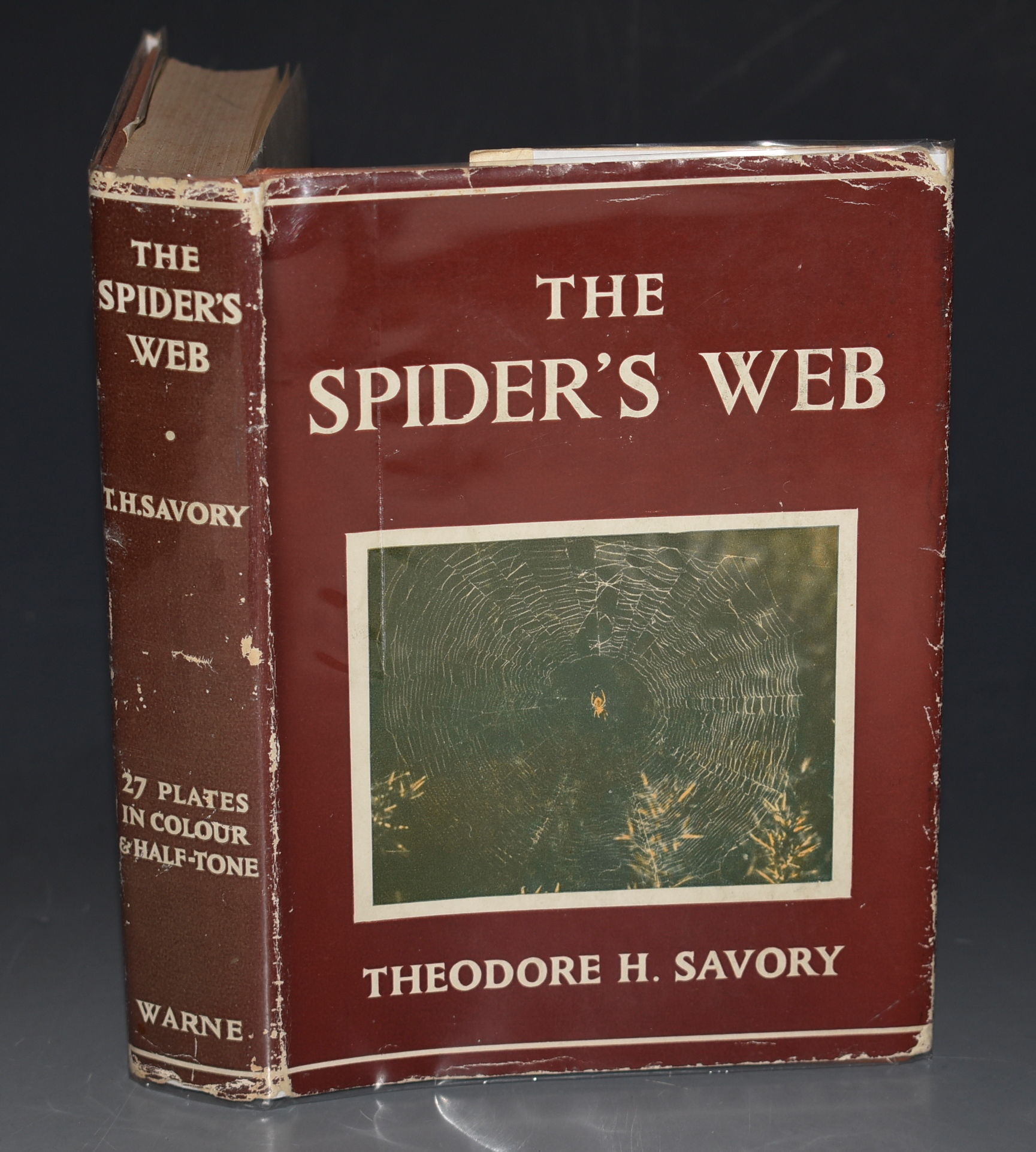 Image for The Spider's Web. With 8 plates in full colour, 19 half tone illustrations and 35 line drawings in the text.