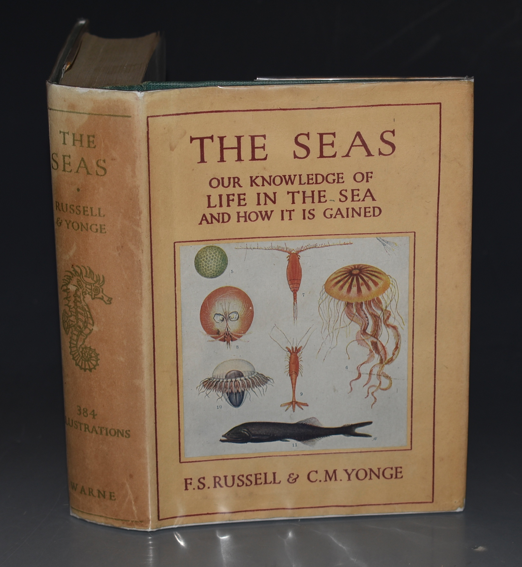 Image for The Seas. Our Knowledge of Life in the Sea and How it is Gained.