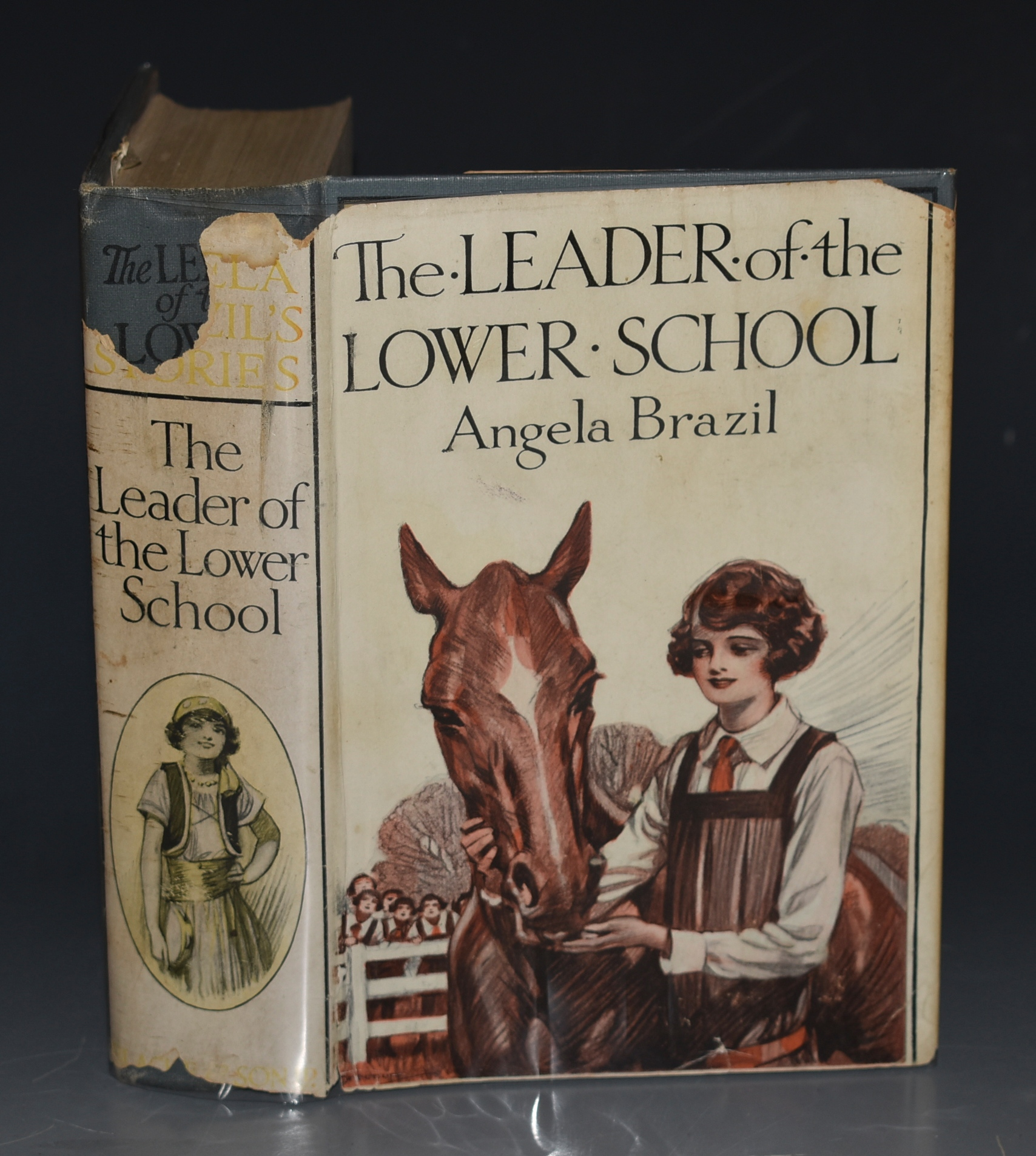 Image for The Leader of the Lower School Illustrated.