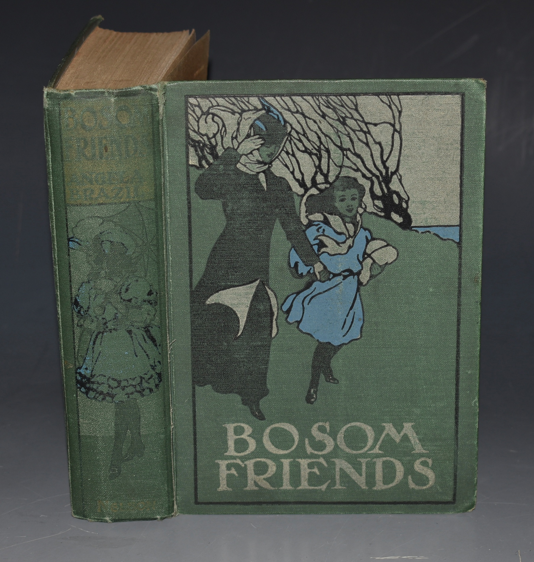 Image for Bosom Friends - A Seaside Story Illustrated.