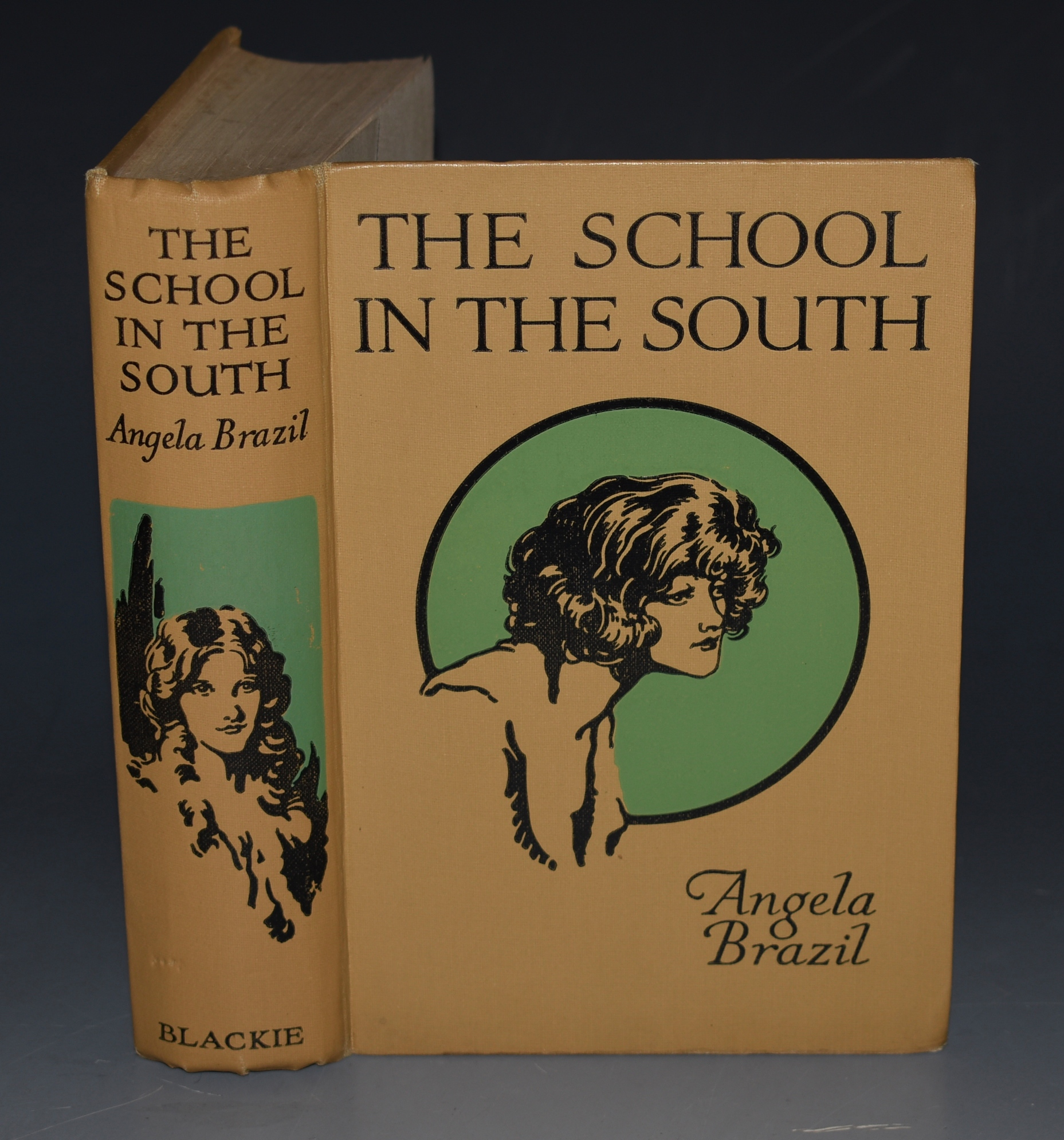 Image for The School in the South. Illustrated by W. Smithson Broadhead.